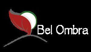 logo belbon